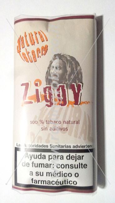 ziggy_busta