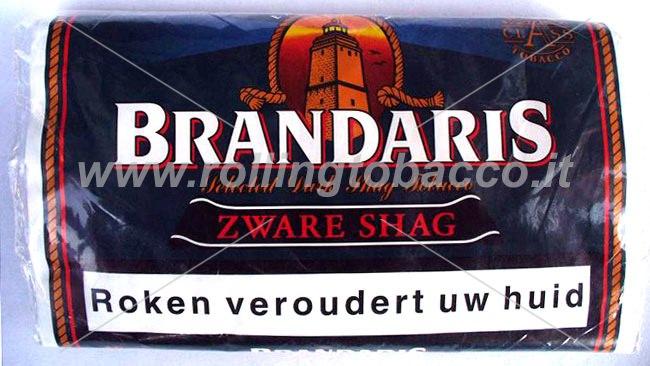 Brandaris-busta